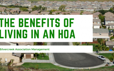 Benefits of Being in an HOA Community
