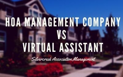 Why a Virtual Assistant Can't Replace Your HOA Management Company